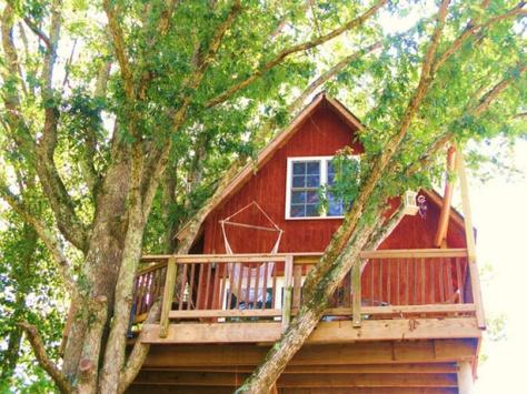 Treehouse 4