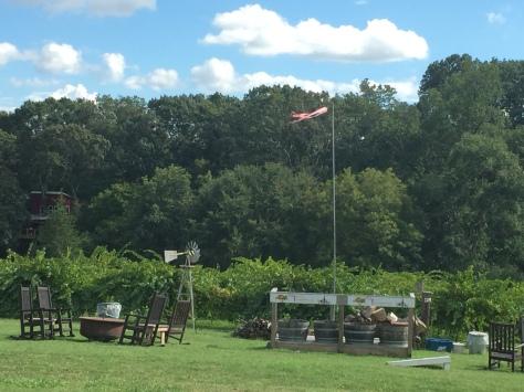 Treehouse Farms 1